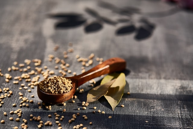 Cooling ayurvedic remedy coriander seeds